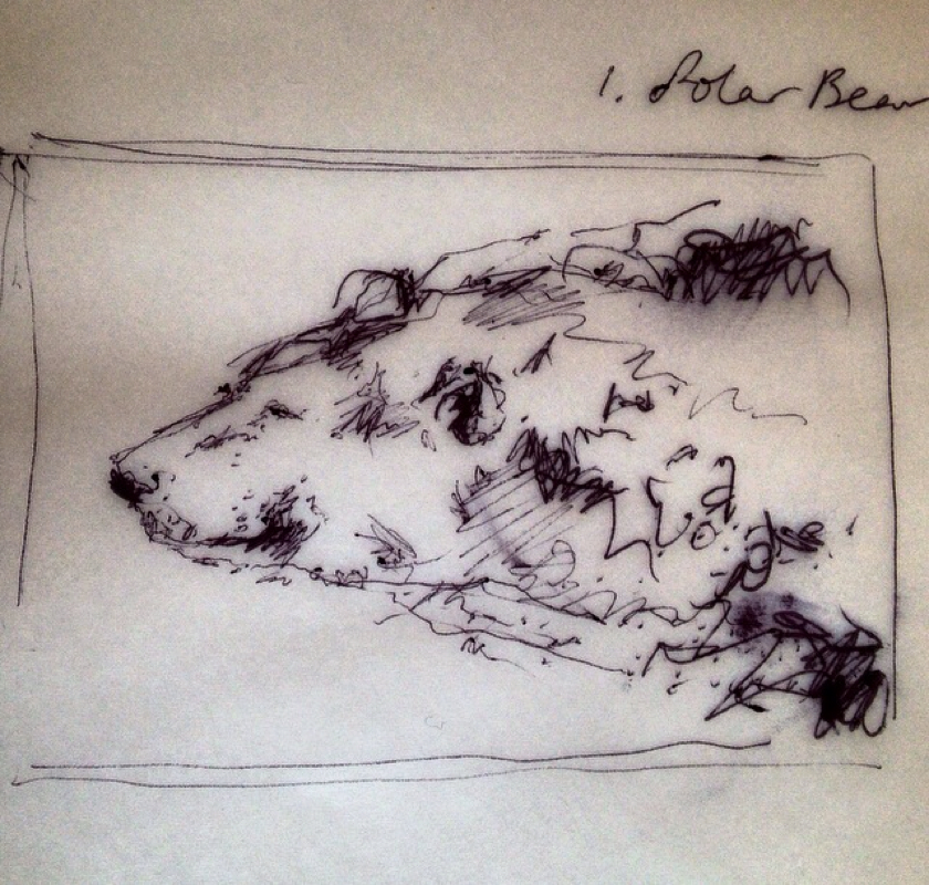 Croquis Ours Polaire – Emily Tan