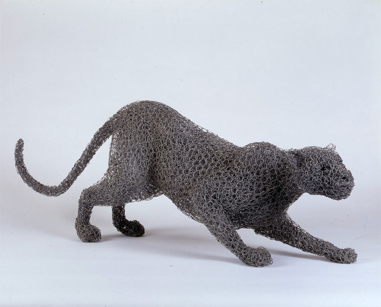 Leopard © Kendra Haste // Crédits photo : Matthew Hollow