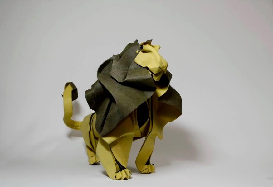 Lion © Hoàng Tiên Quyêt