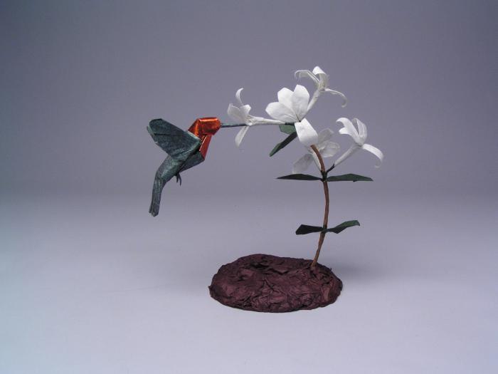 Colibri © Robert J. Lang