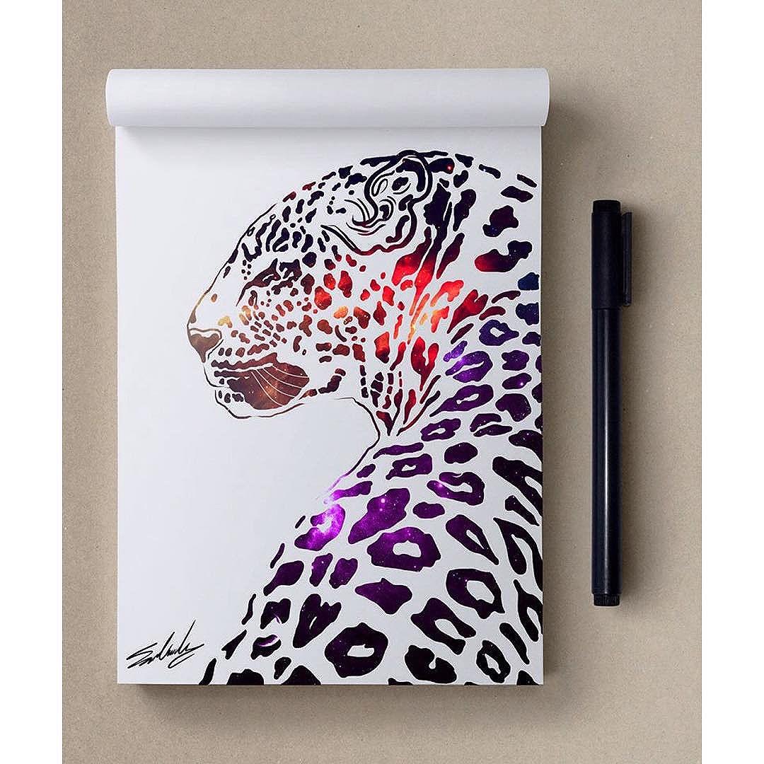 Panthère © Mohamed Salah