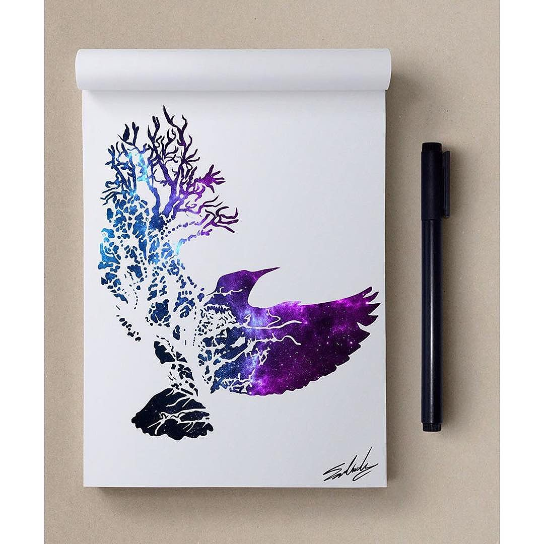 Oiseau © Mohamed Salah