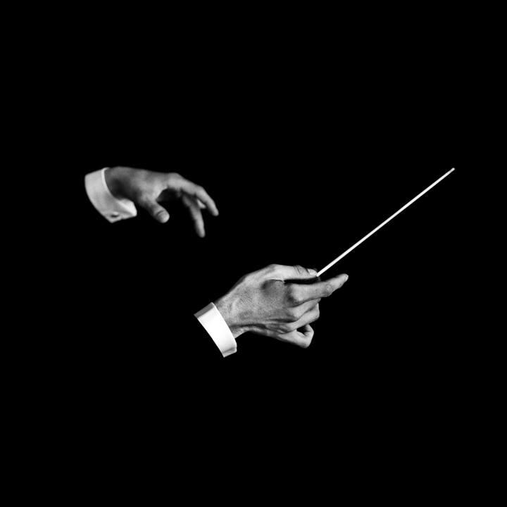 Maestro © Benoit Courti