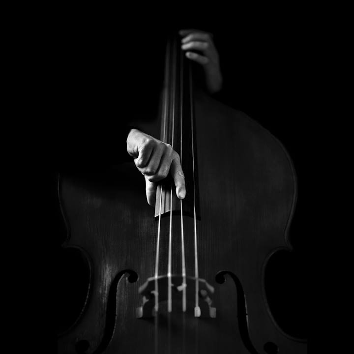 Violon © Benoit Courti