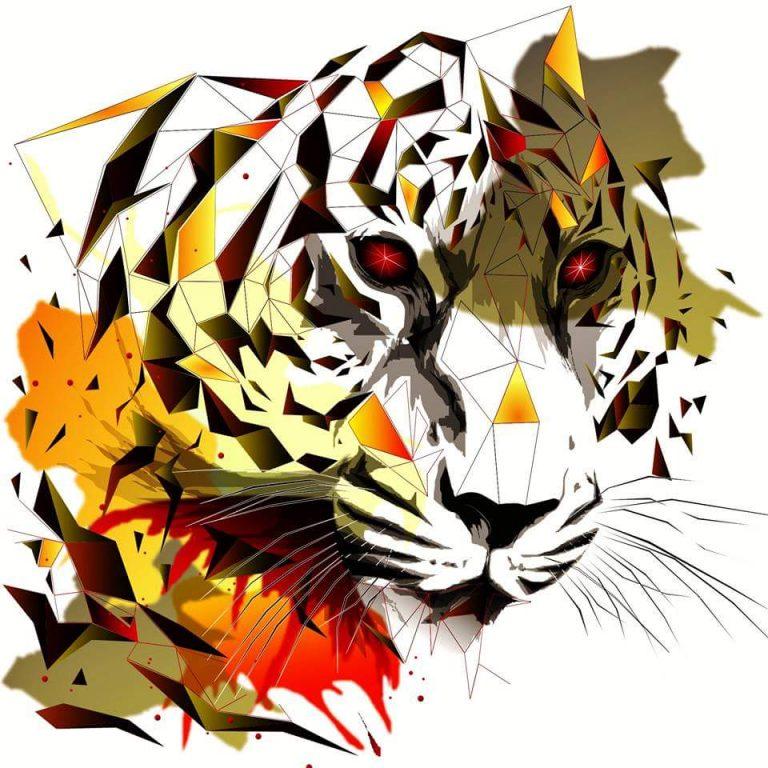 Tigre géométrique – Inconnu