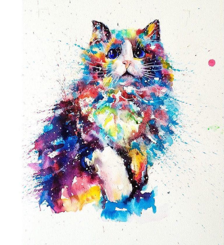 Petit chat mignon @liviing
