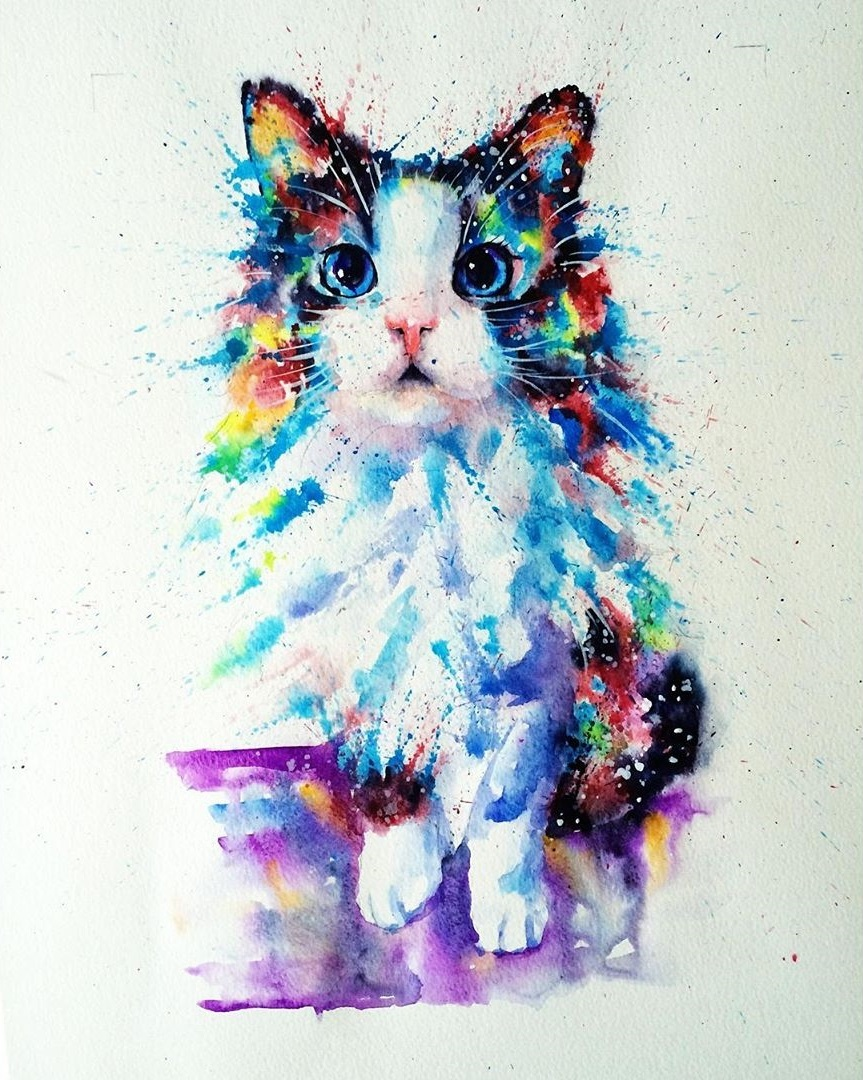 Chat peinture eau © liviing