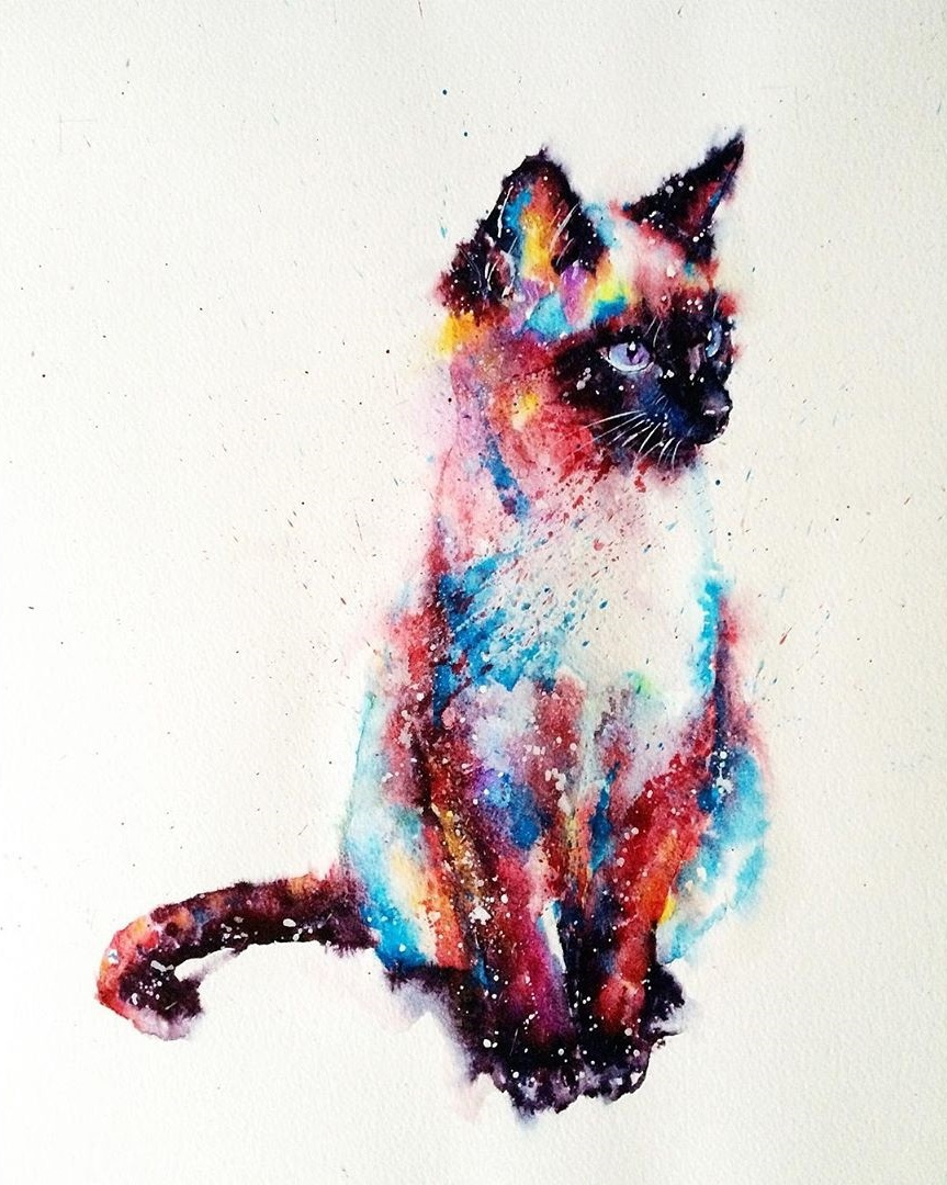 Chat watercolor © liviing