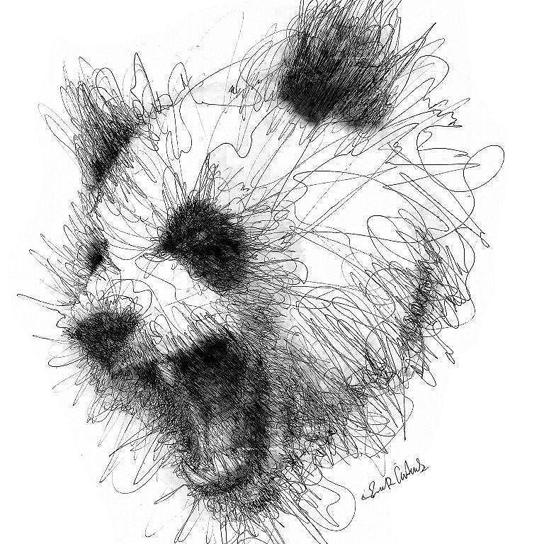 Panda pas content © Erick Centeno