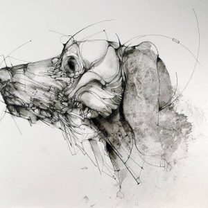 Chien © Eric Lacombe
