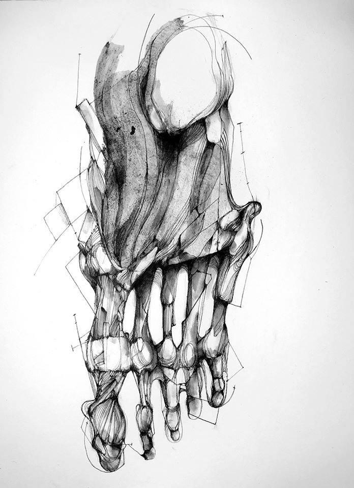 Pied © Eric Lacombe