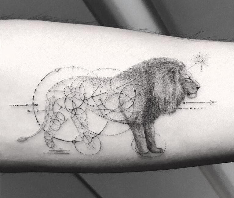 Lion et géométrie – Dr Woo
