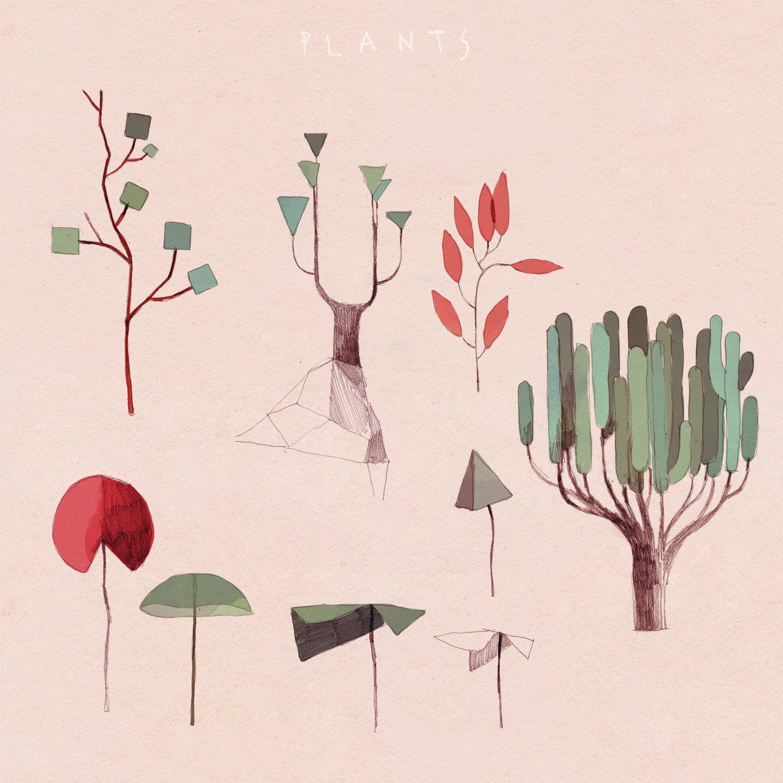 Croquis des plantes – GRIS