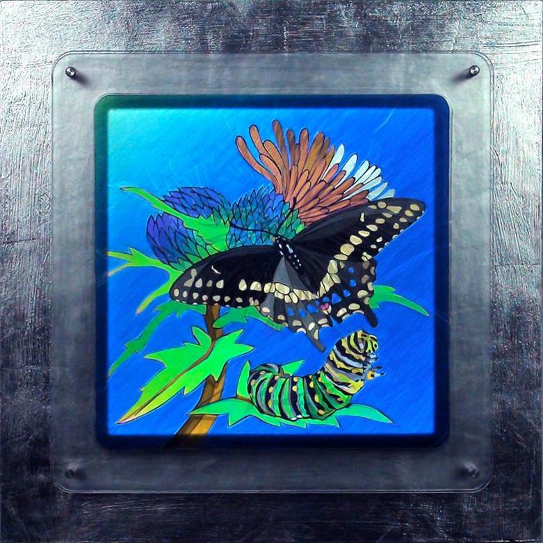 Un papillon – Austine