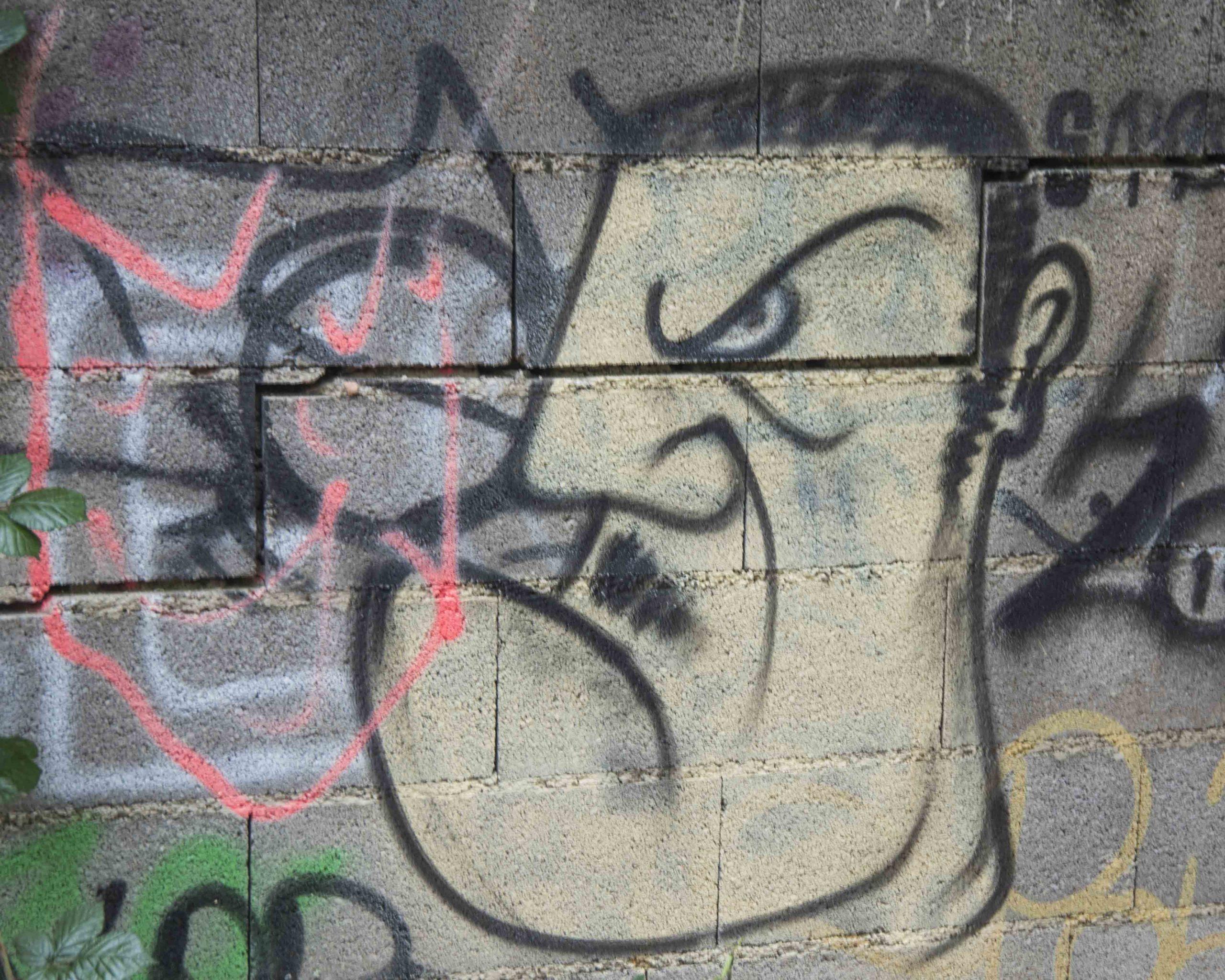 Impasse Lafleur street art Rodez La Tête